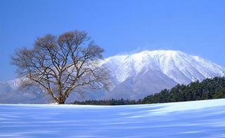 雪景色 3 ブログ用.png
